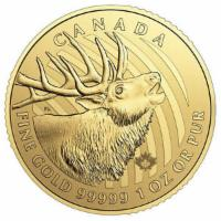 1 oz Gold Hirsch 2017 -