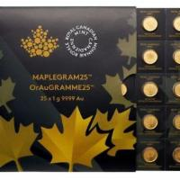 25x 1 Gramm Goldmünze