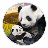 30 Gramm Silber Panda