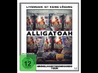 Alligatoah - Livemusik