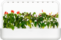 EMSA 600070 Click & Grow