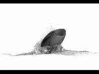 HOT OCTOPUSS 180916 Pulse