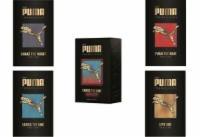 Puma 5x50 ml EDT Cross