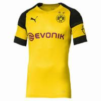 PUMA BVB Herren Authentic