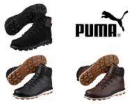 Puma Desierto Fun / L