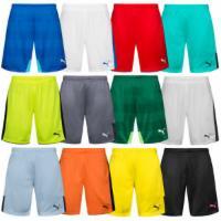 PUMA Herren Sport Shorts