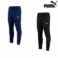 Puma TeamRISE Poly Herren