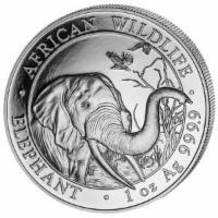 Silbermünze Elefant