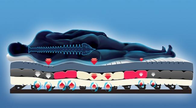 panther ergomatrix de luxe matratzen ab 249