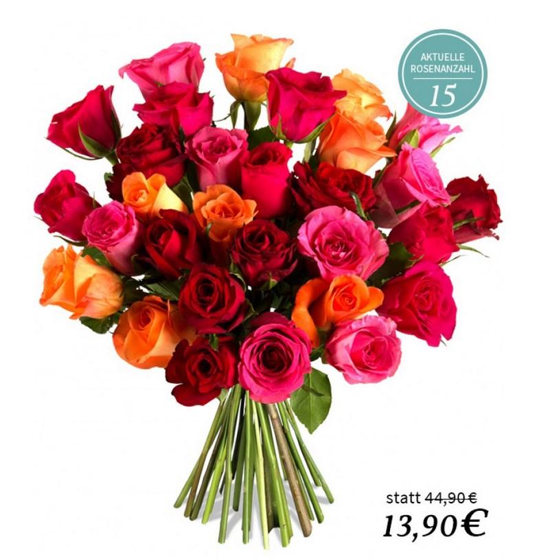 bis 22 uhr miflora rosenrallye bis zu 30 rainbow rosen. Black Bedroom Furniture Sets. Home Design Ideas