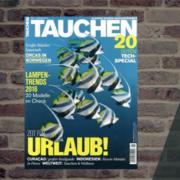 tauchen4