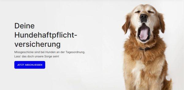 getsafe-hundehaftpflichtversicherung-kostenlos-banne