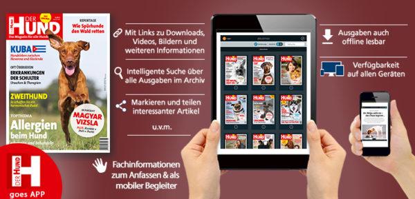 der-hund-app-banner