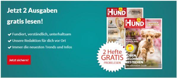 der-hund-zeitung-banner