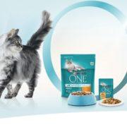 🐱 *GRATIS* 800g Purina ONE Katzenfutter abstauben! + Überraschung