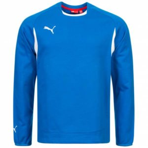 puma-trainings-sweatshirt