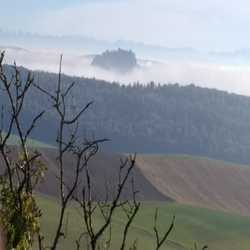 Profilbild von baharat
