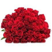 44 rote Rosen für 24,98€