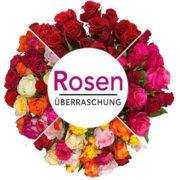 Blume-Ideal: Rosenüberraschung mit 47 Rosen 50cm